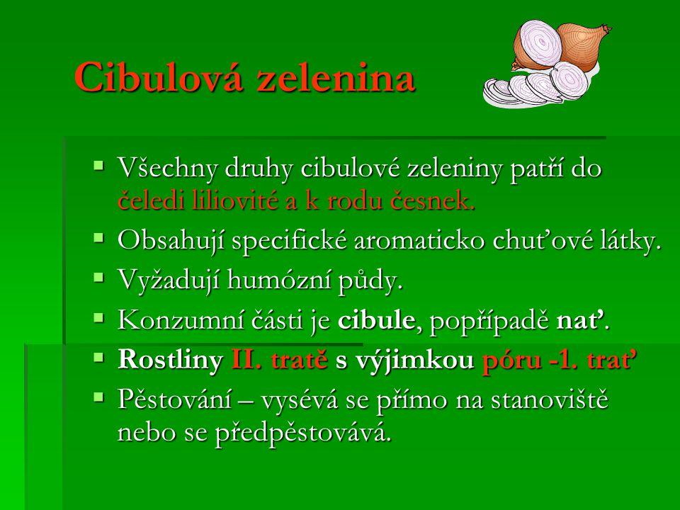 Cibulová zelenina  Všechny druhy cibulové zeleniny patří do čeledi liliovité a k rodu česnek.
