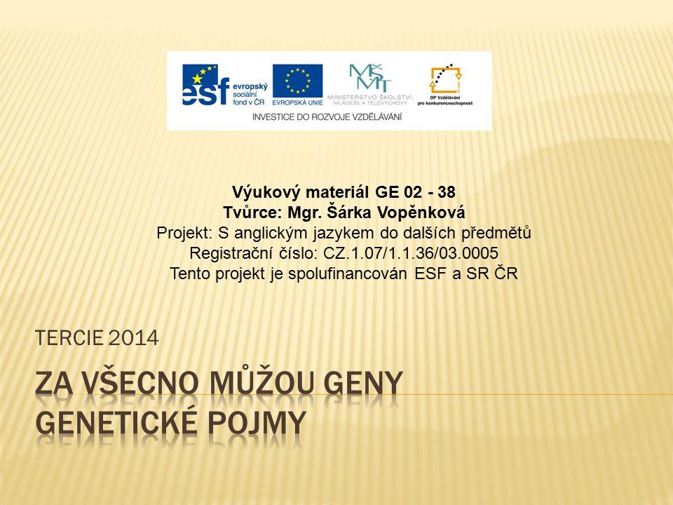 TERCIE 2014 Výukový materiál GE 02 - 38 Tvůrce: Mgr.