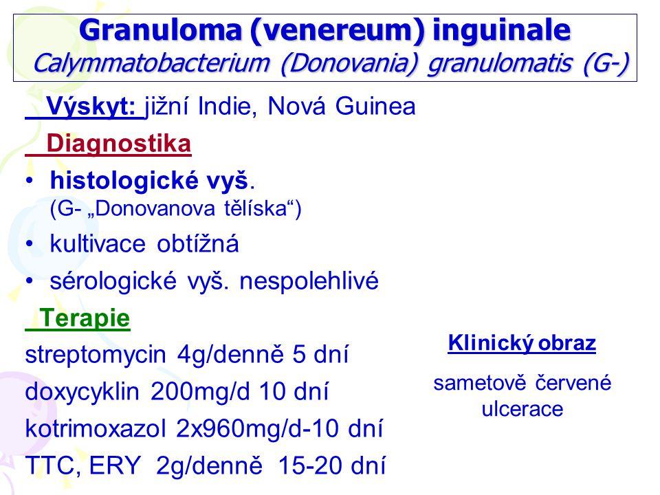 Granuloma (venereum) inguinale Calymmatobacterium (Donovania) granulomatis (G-) Výskyt: jižní Indie, Nová Guinea Diagnostika histologické vyš.