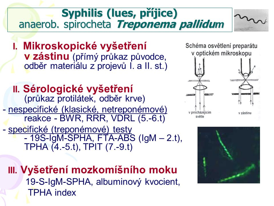 Syphilis (lues, příjice) anaerob. spirocheta Treponema pallidu m I. Mikroskopické vyšetření v zástinu (přímý průkaz původce, odběr materiálu z projevů