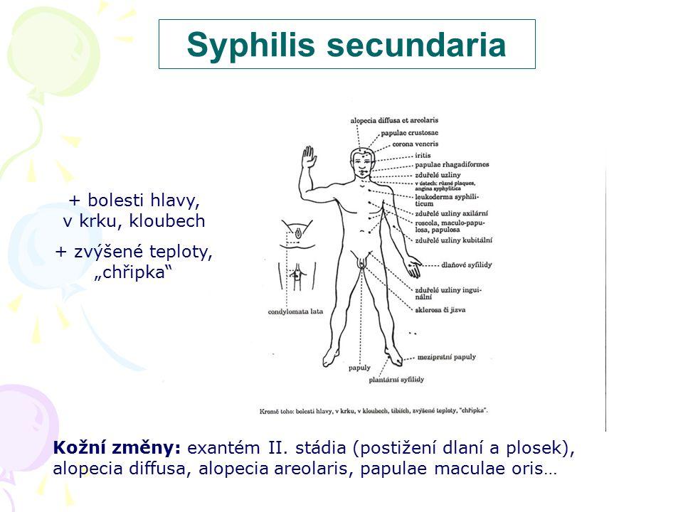 """Syphilis secundaria + bolesti hlavy, v krku, kloubech + zvýšené teploty, """"chřipka"""" Kožní změny: exantém II. stádia (postižení dlaní a plosek), alopeci"""