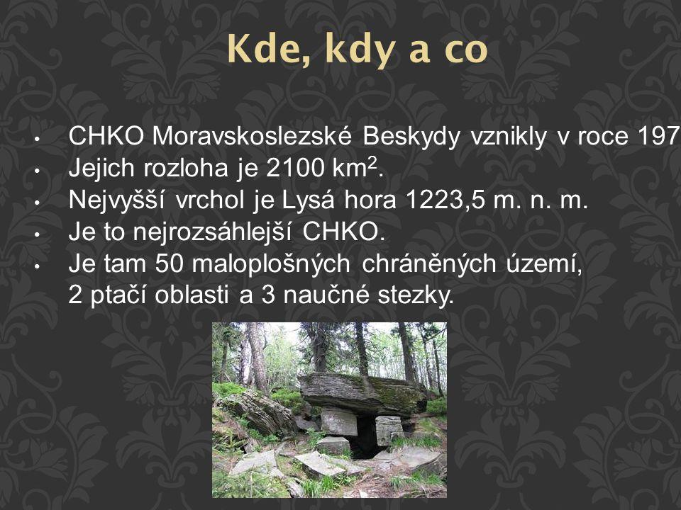CHKO Moravskoslezské Beskydy vznikly v roce 1973. Jejich rozloha je 2100 km 2. Nejvyšší vrchol je Lysá hora 1223,5 m. n. m. Je to nejrozsáhlejší CHKO.