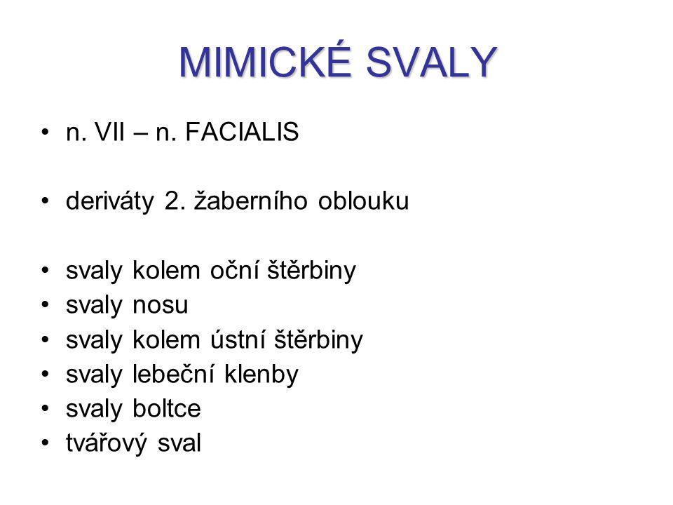 MIMICKÉ SVALY n. VII – n. FACIALIS deriváty 2. žaberního oblouku svaly kolem oční štěrbiny svaly nosu svaly kolem ústní štěrbiny svaly lebeční klenby
