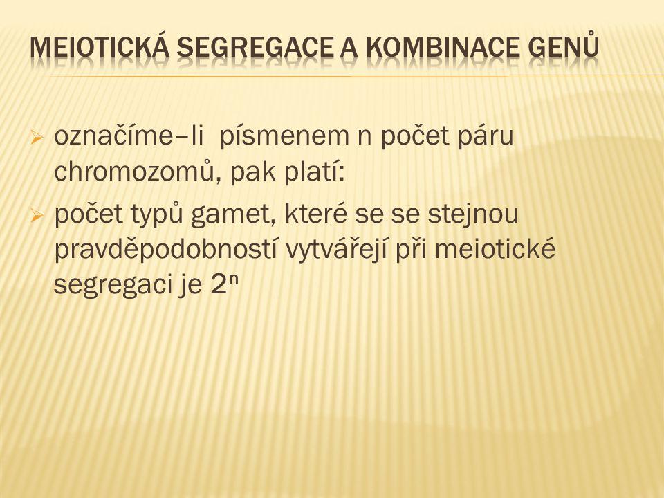  označíme–li písmenem n počet páru chromozomů, pak platí:  počet typů gamet, které se se stejnou pravděpodobností vytvářejí při meiotické segregaci