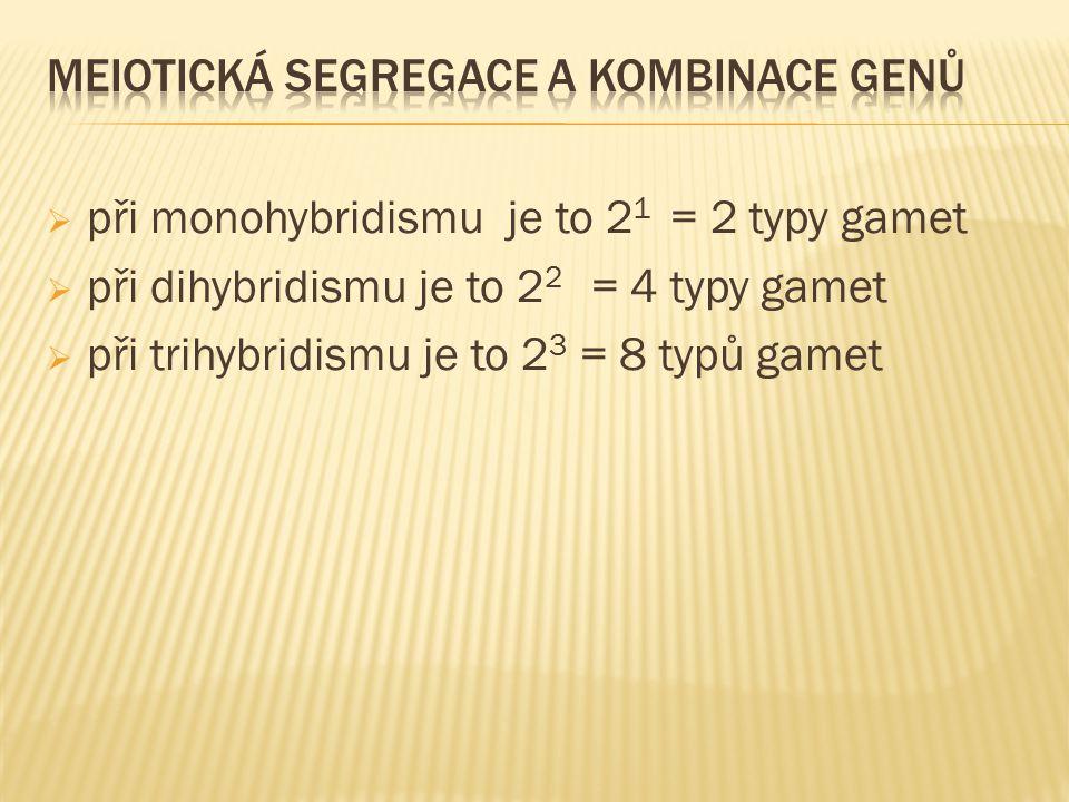  při monohybridismu je to 2 1 = 2 typy gamet  při dihybridismu je to 2 2 = 4 typy gamet  při trihybridismu je to 2 3 = 8 typů gamet