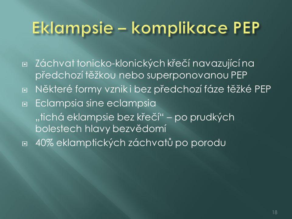  Záchvat tonicko-klonických křečí navazující na předchozí těžkou nebo superponovanou PEP  Některé formy vznik i bez předchozí fáze těžké PEP  Eclam