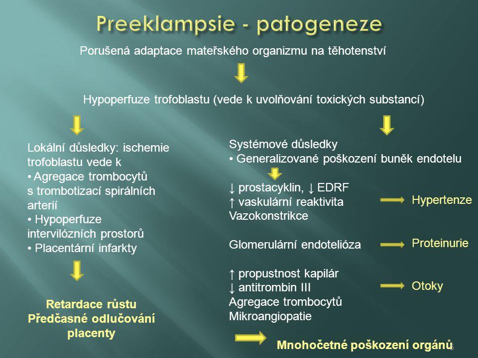 Porušená adaptace mateřského organizmu na těhotenství Hypoperfuze trofoblastu (vede k uvolňování toxických substancí) Lokální důsledky: ischemie trofoblastu vede k Agregace trombocytů s trombotizací spirálních arterií Hypoperfuze intervilózních prostorů Placentární infarkty Retardace růstu Předčasné odlučování placenty Systémové důsledky Generalizované poškození buněk endotelu ↓ prostacyklin, ↓ EDRF ↑ vaskulární reaktivita Vazokonstrikce Glomerulární endotelióza ↑ propustnost kapilár ↓ antitrombin III Agregace trombocytů Mikroangiopatie Mnohočetné poškození orgánů Hypertenze Proteinurie Otoky 5