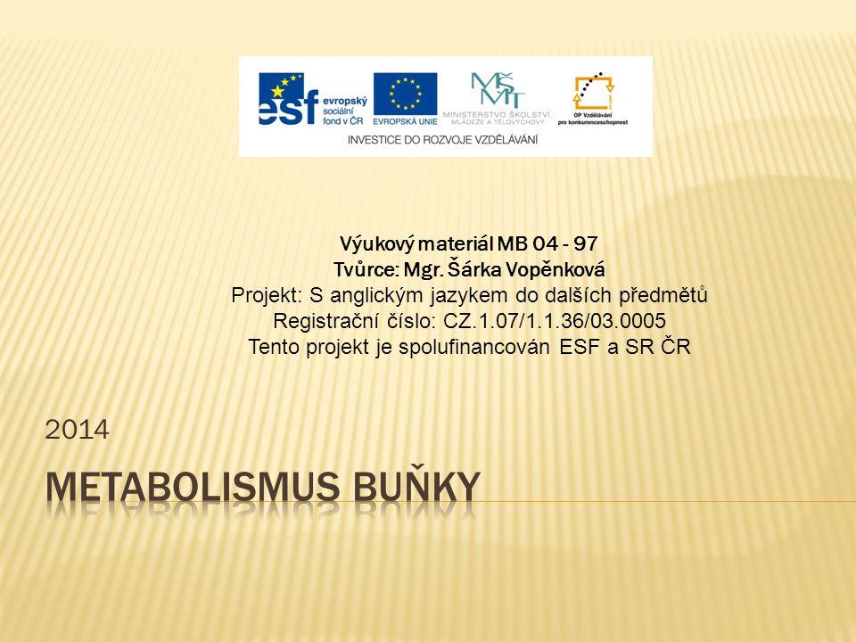 2014 Výukový materiál MB 04 - 97 Tvůrce: Mgr. Šárka Vopěnková Projekt: S anglickým jazykem do dalších předmětů Registrační číslo: CZ.1.07/1.1.36/03.00