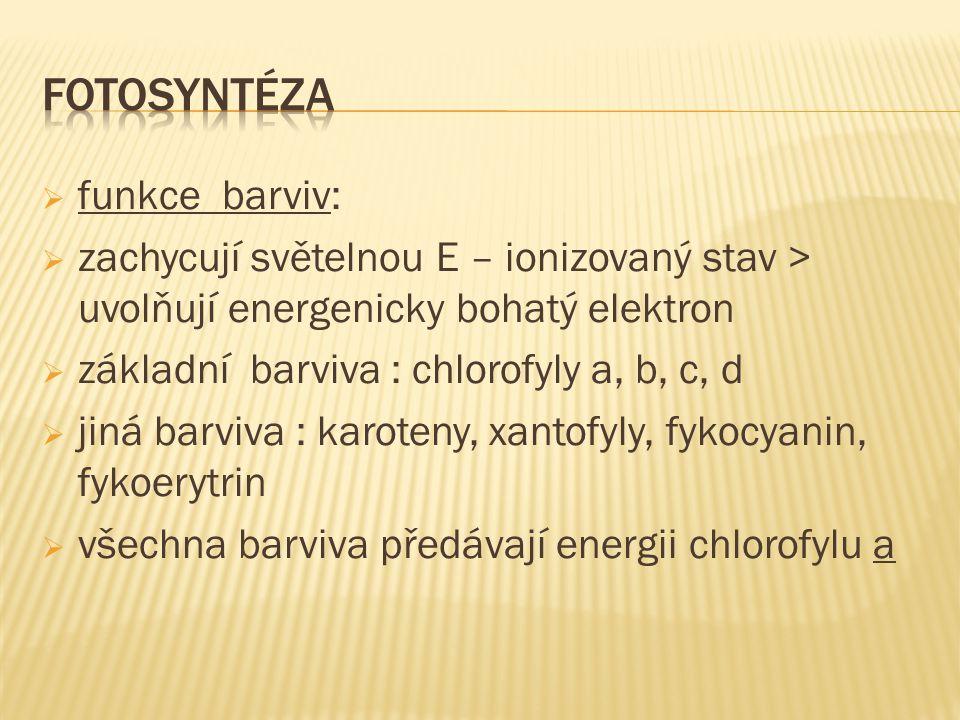  funkce barviv:  zachycují světelnou E – ionizovaný stav > uvolňují energenicky bohatý elektron  základní barviva : chlorofyly a, b, c, d  jiná barviva : karoteny, xantofyly, fykocyanin, fykoerytrin  všechna barviva předávají energii chlorofylu a