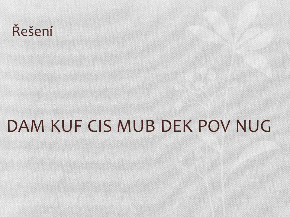 Řešení DAM KUF CIS MUB DEK POV NUG