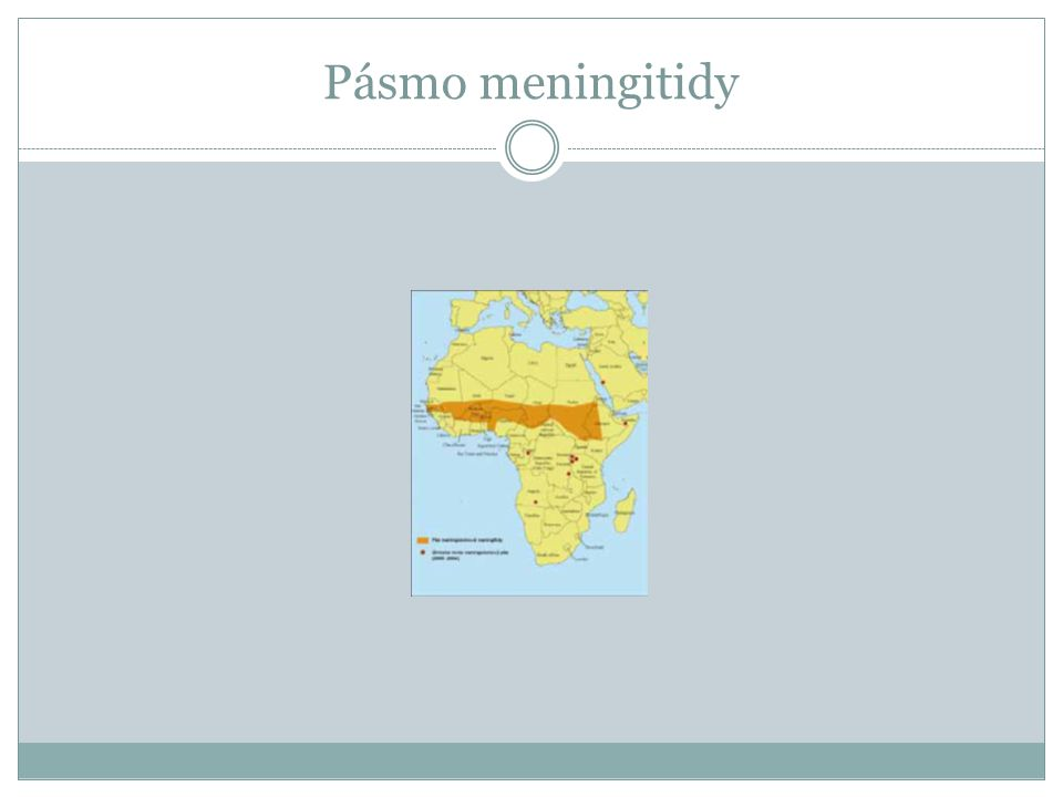 Pásmo meningitidy