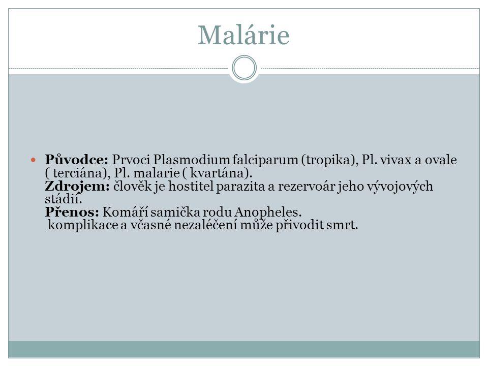 Malárie Původce: Prvoci Plasmodium falciparum (tropika), Pl. vivax a ovale ( terciána), Pl. malarie ( kvartána). Zdrojem: člověk je hostitel parazita