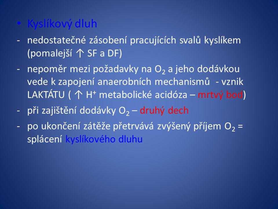 Kyslíkový dluh -nedostatečné zásobení pracujících svalů kyslíkem (pomalejší ↑ SF a DF) -nepoměr mezi požadavky na O 2 a jeho dodávkou vede k zapojení anaerobních mechanismů - vznik LAKTÁTU ( ↑ H + metabolické acidóza – mrtvý bod) -při zajištění dodávky O 2 – druhý dech -po ukončení zátěže přetrvává zvýšený příjem O 2 = splácení kyslíkového dluhu