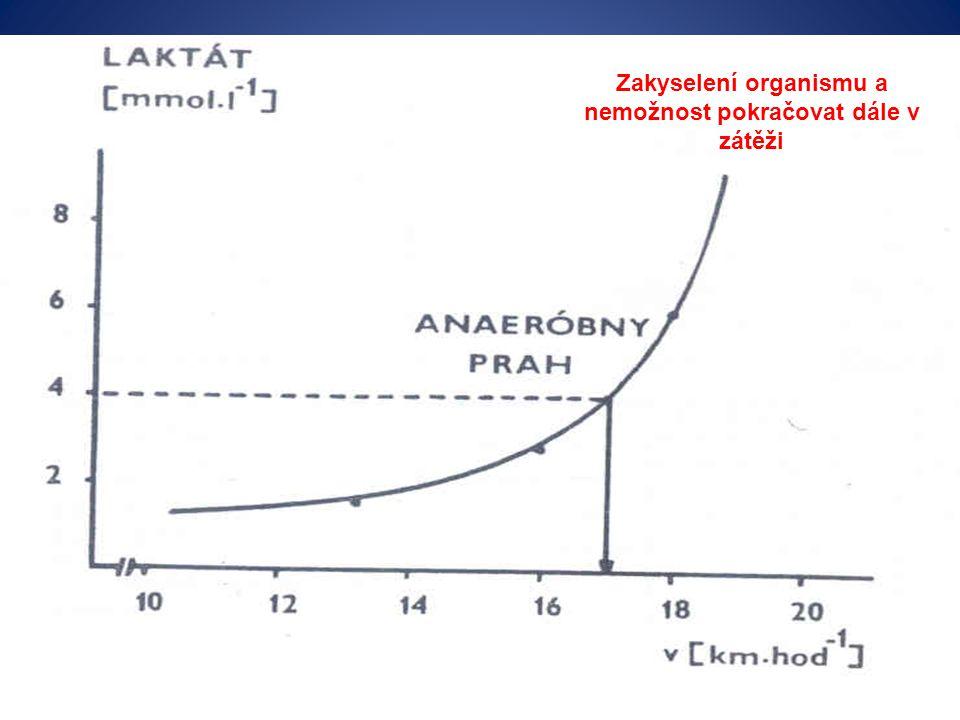 Zakyselení organismu a nemožnost pokračovat dále v zátěži (Hamar & Lipková, 2001)