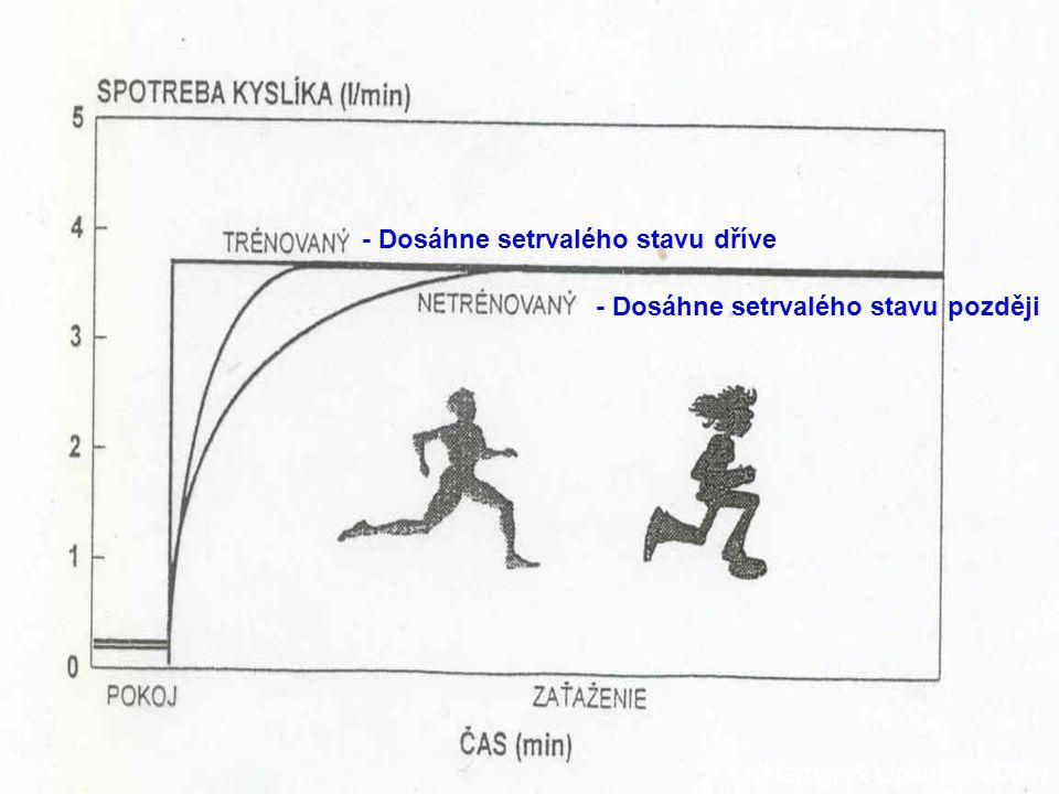 - Dosáhne setrvalého stavu dříve - Dosáhne setrvalého stavu později (Hamar & Lipková, 2001)