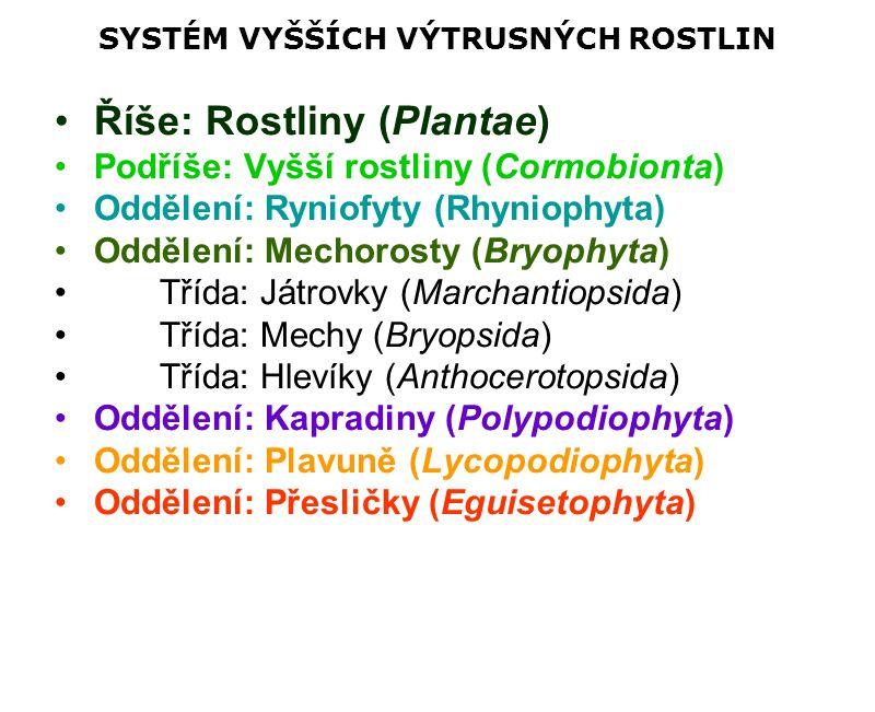 SYSTÉM VYŠŠÍCH VÝTRUSNÝCH ROSTLIN Říše: Rostliny (Plantae) Podříše: Vyšší rostliny (Cormobionta) Oddělení: Ryniofyty (Rhyniophyta) Oddělení: Mechorost