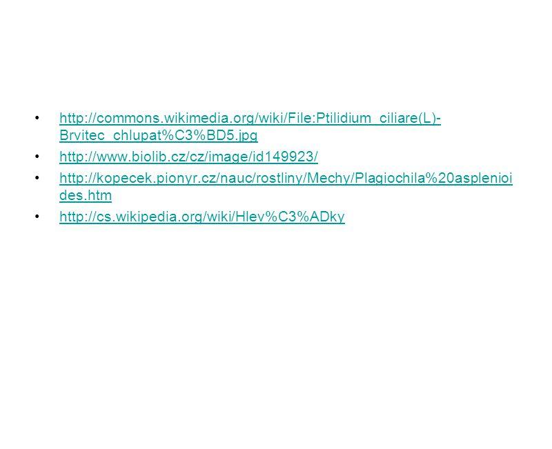 http://commons.wikimedia.org/wiki/File:Ptilidium_ciliare(L)- Brvitec_chlupat%C3%BD5.jpghttp://commons.wikimedia.org/wiki/File:Ptilidium_ciliare(L)- Br