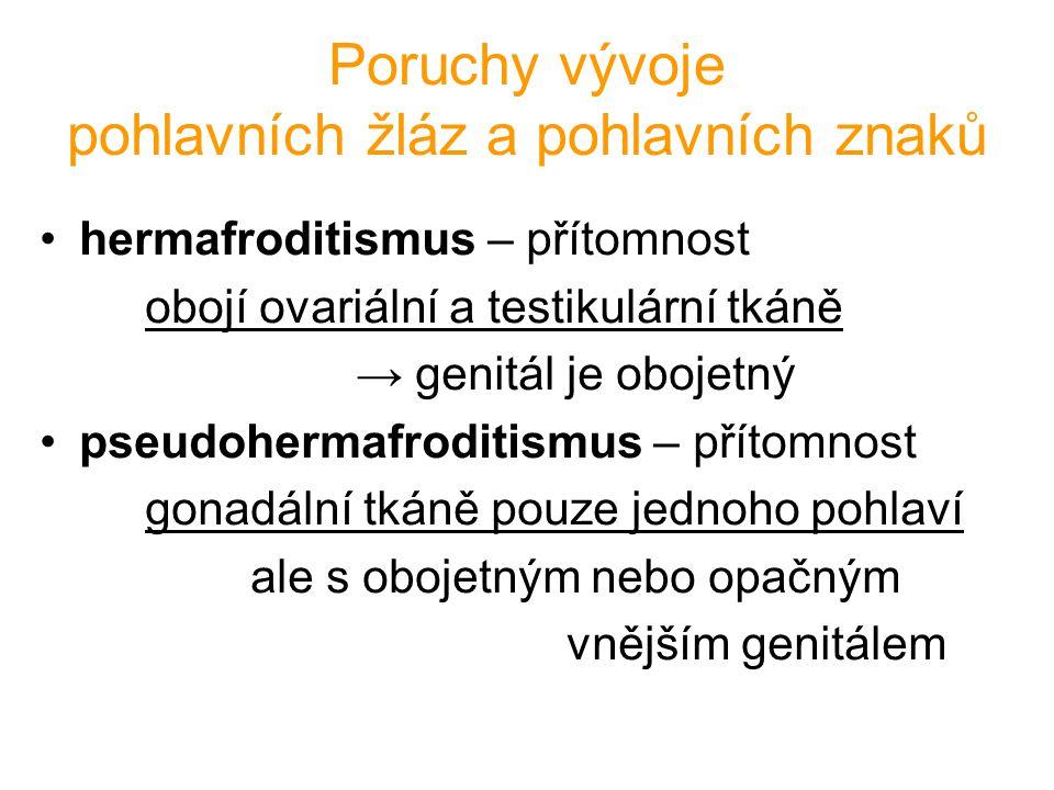 Poruchy vývoje pohlavních žláz a pohlavních znaků hermafroditismus – přítomnost obojí ovariální a testikulární tkáně → genitál je obojetný pseudoherma