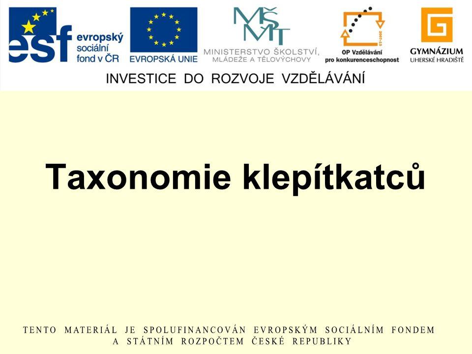 Taxonomie klepítkatců