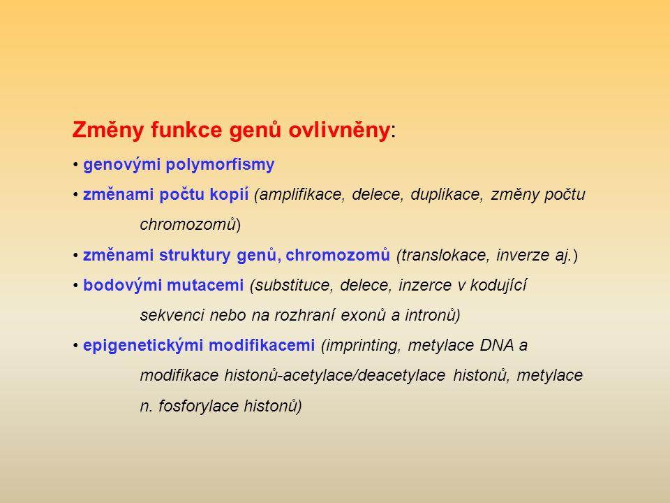 Změny funkce genů ovlivněny: genovými polymorfismy změnami počtu kopií (amplifikace, delece, duplikace, změny počtu chromozomů) změnami struktury genů