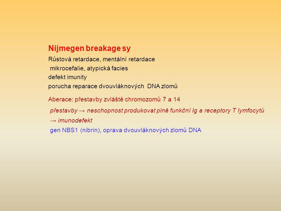 Nijmegen breakage sy Růstová retardace, mentální retardace mikrocefalie, atypická facies defekt imunity porucha reparace dvouvláknových DNA zlomů Aber