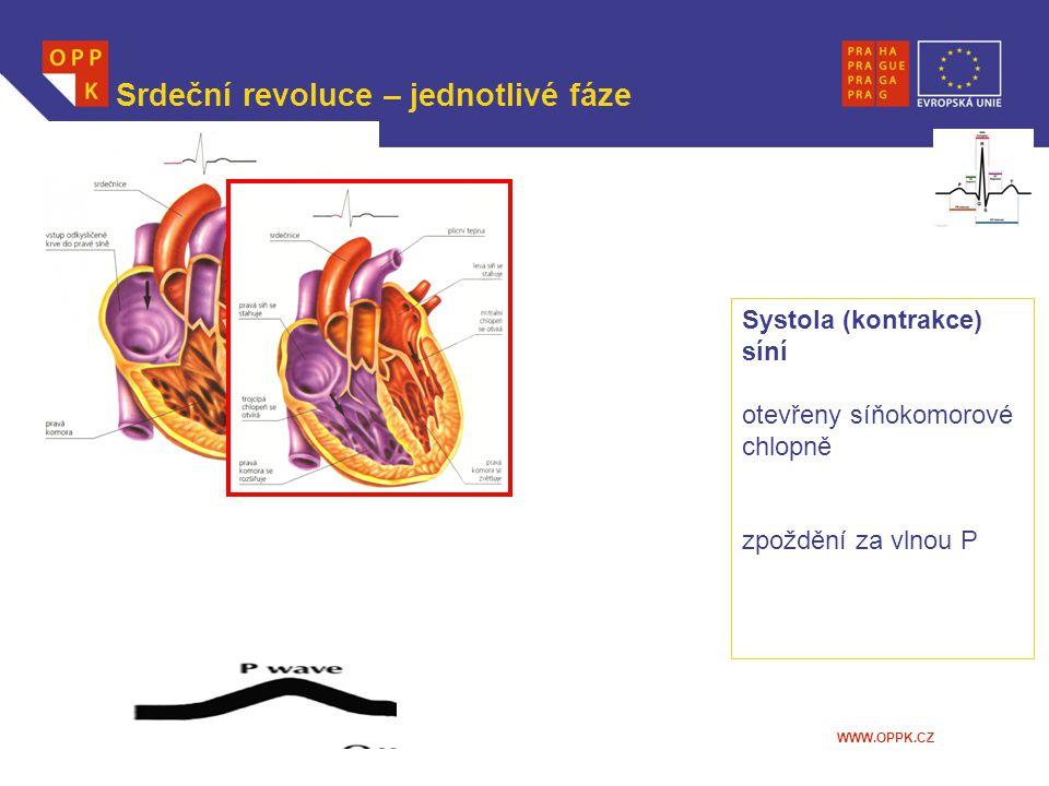 WWW.OPPK.CZ Srdeční revoluce – jednotlivé fáze Systola (kontrakce) síní otevřeny síňokomorové chlopně zpoždění za vlnou P