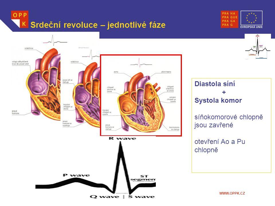 WWW.OPPK.CZ Srdeční revoluce – jednotlivé fáze Diastola síní + Systola komor síňokomorové chlopně jsou zavřené otevření Ao a Pu chlopně