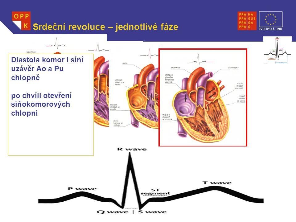 WWW.OPPK.CZ Srdeční revoluce – jednotlivé fáze Diastola komor i síní uzávěr Ao a Pu chlopně po chvíli otevření síňokomorových chlopní