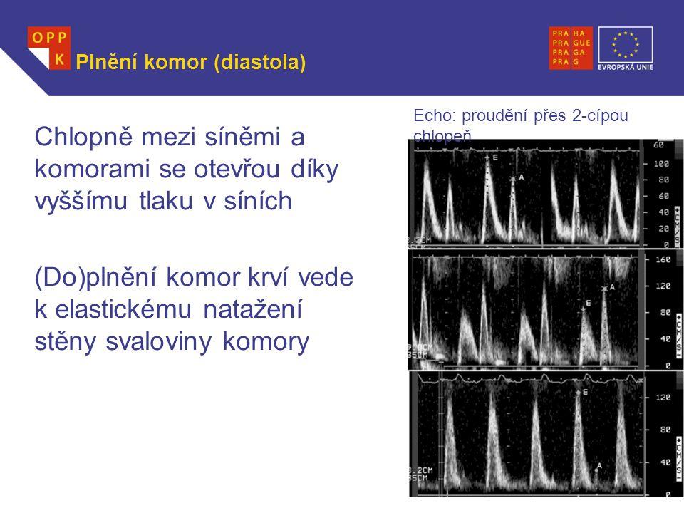 WWW.OPPK.CZ Plnění komor (diastola) Chlopně mezi síněmi a komorami se otevřou díky vyššímu tlaku v síních (Do)plnění komor krví vede k elastickému nat