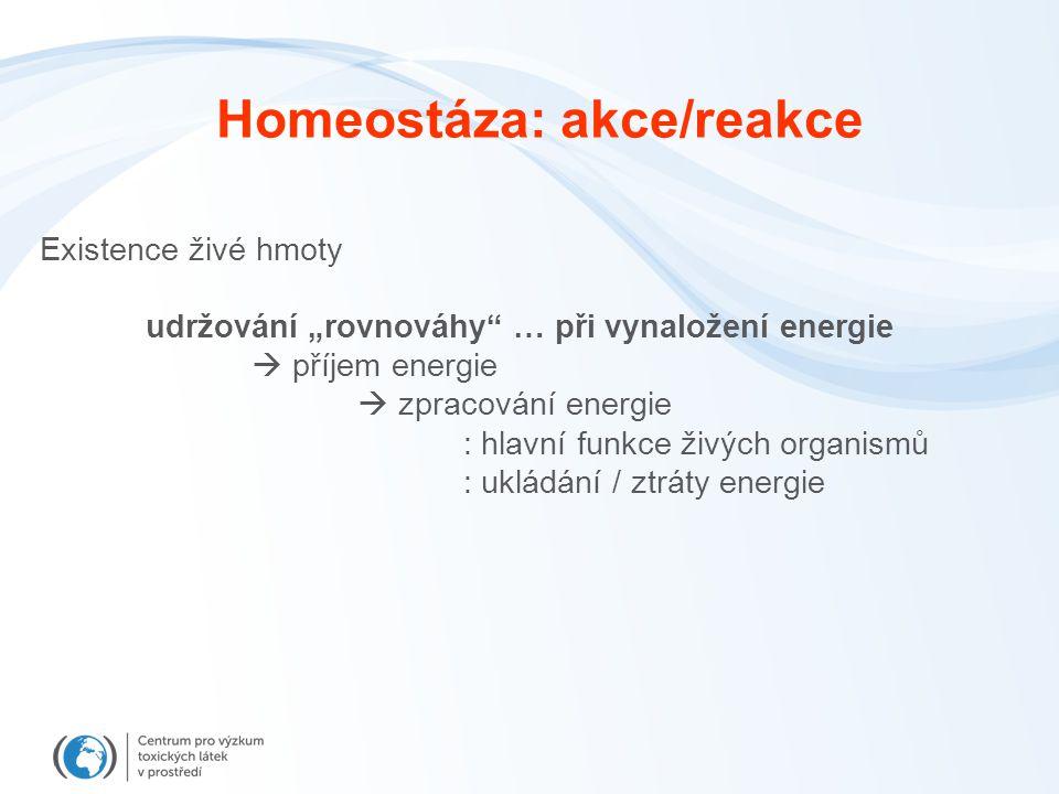 """Homeostáza: akce/reakce Existence živé hmoty udržování """"rovnováhy … při vynaložení energie  příjem energie  zpracování energie : hlavní funkce živých organismů : ukládání / ztráty energie"""