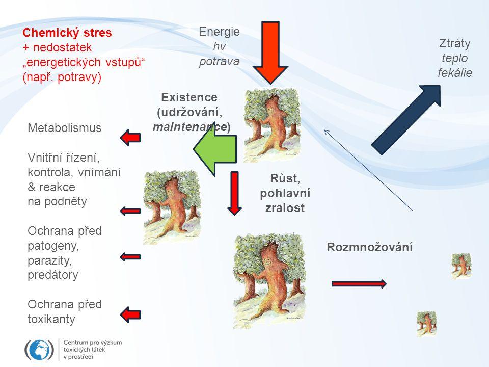 """Energie hv potrava Ztráty teplo fekálie Existence (udržování, maintenance) Růst, pohlavní zralost Rozmnožování Metabolismus Vnitřní řízení, kontrola, vnímání & reakce na podněty Ochrana před patogeny, parazity, predátory Ochrana před toxikanty Chemický stres + nedostatek """"energetických vstupů (např."""