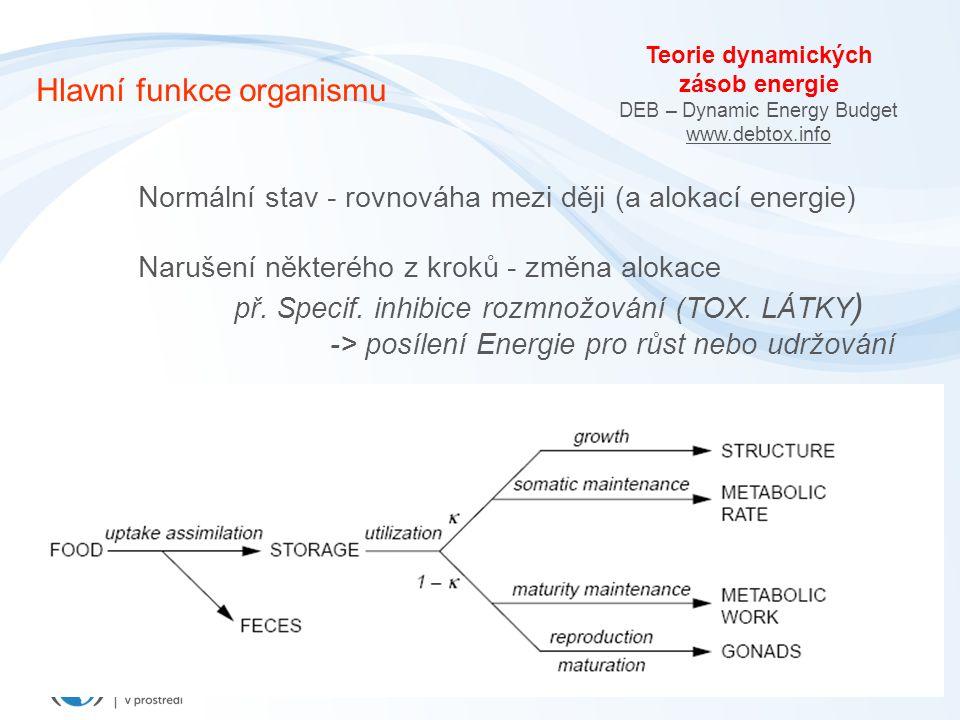 Hlavní funkce organismu Normální stav - rovnováha mezi ději (a alokací energie) Narušení některého z kroků - změna alokace př.
