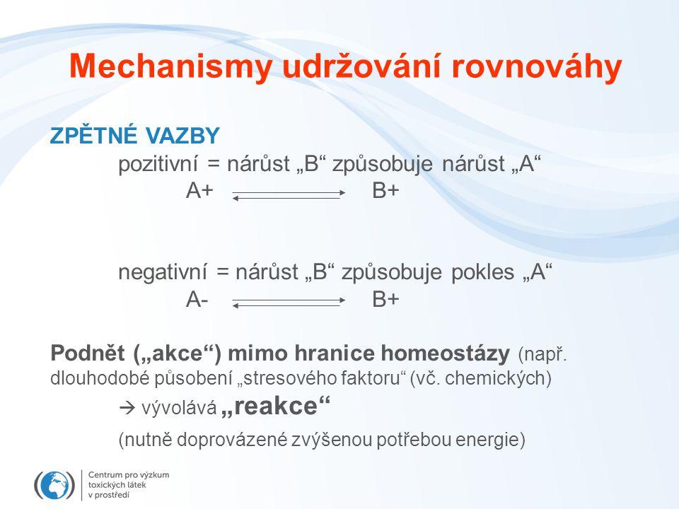 """Mechanismy udržování rovnováhy ZPĚTNÉ VAZBY pozitivní = nárůst """"B způsobuje nárůst """"A A+ B+ negativní = nárůst """"B způsobuje pokles """"A A- B+ Podnět (""""akce ) mimo hranice homeostázy (např."""