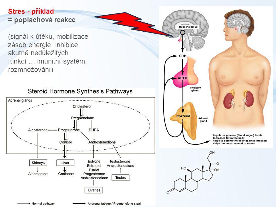 Stres - příklad = poplachová reakce (signál k útěku, mobilizace zásob energie, inhibice akutně nedůležitých funkcí … imunitní systém, rozmnožování)