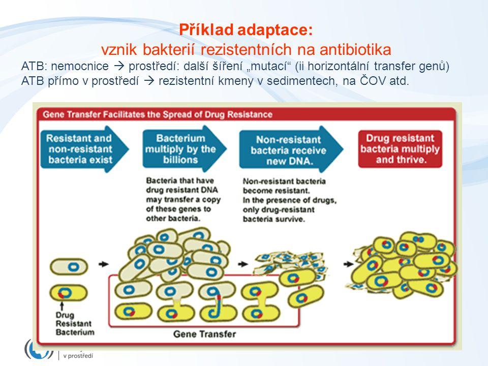 """Příklad adaptace: vznik bakterií rezistentních na antibiotika ATB: nemocnice  prostředí: další šíření """"mutací (ii horizontální transfer genů) ATB přímo v prostředí  rezistentní kmeny v sedimentech, na ČOV atd."""