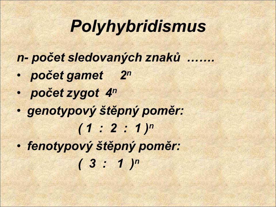 Polyhybridismus n- počet sledovaných znaků ……. počet gamet 2 n počet zygot 4 n genotypový štěpný poměr: ( 1 : 2 : 1 ) n fenotypový štěpný poměr: ( 3 :