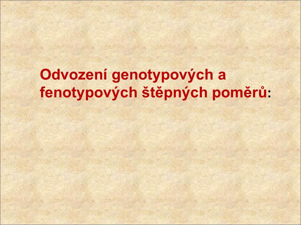 Odvození genotypových a fenotypových štěpných poměrů :