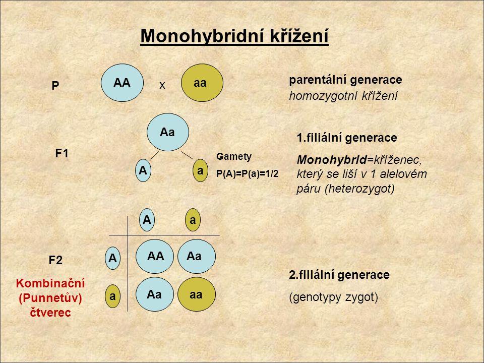 Gamety P(A)=P(a)=1/2 AA x aa Aa aa AA Aa A a A A a a P F1 F2 parentální generace homozygotní křížení 1.filiální generace Monohybrid=kříženec, který se