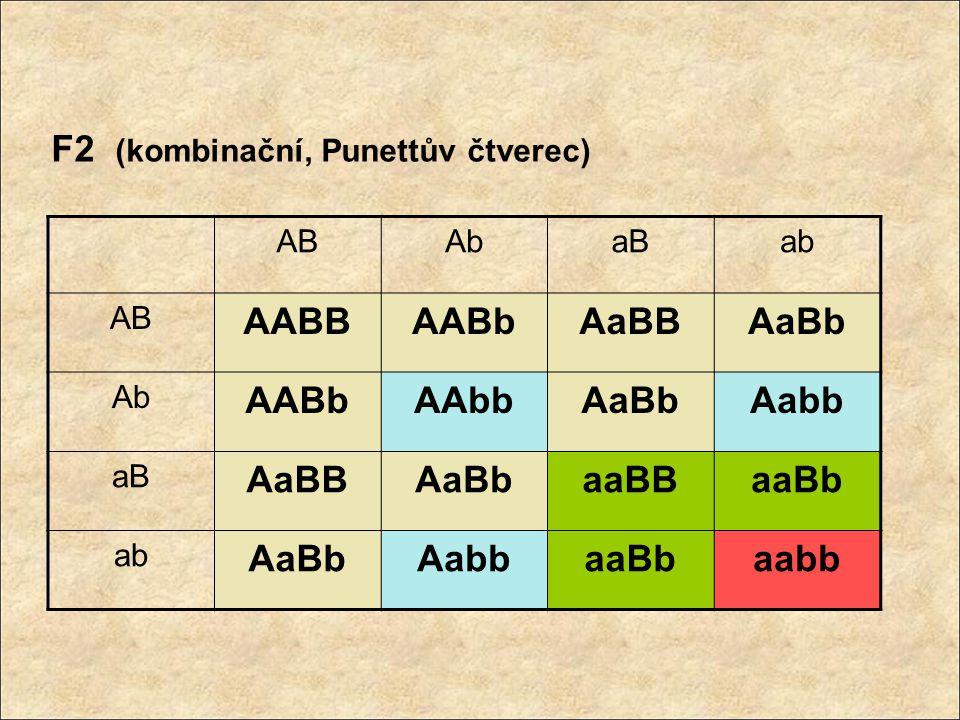 F2 (kombinační, Punettův čtverec) ABAbaBab AB AABBAABbAaBBAaBb Ab AABbAAbbAaBbAabb aB AaBBAaBbaaBBaaBb ab AaBbAabbaaBbaabb