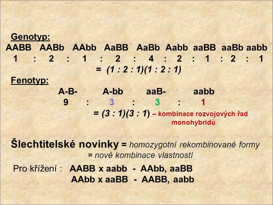 Genotyp: AABB AABb AAbb AaBB AaBb Aabb aaBB aaBb aabb 1 : 2 : 1 : 2 : 4 : 2 : 1 : 2 : 1 = (1 : 2 : 1)(1 : 2 : 1) Fenotyp: A-B- A-bb aaB- aabb 9 : 3 :