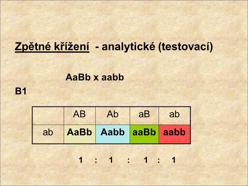 Trihybridismus – 3 alelové páry P: 1) AABBCC x aabbcc 2) AABBcc x aabbCC 3)AAbbcc x aaBBCC 4)AAbbCC x aaBBcc F1: AaBbCc 8 typů gamet: ABC ABc AbC Abc aBC aBc abC abc 1 : 1 : 1 : 1 : 1 : 1 : 1 : 1 F2 64 zygotických kombinací
