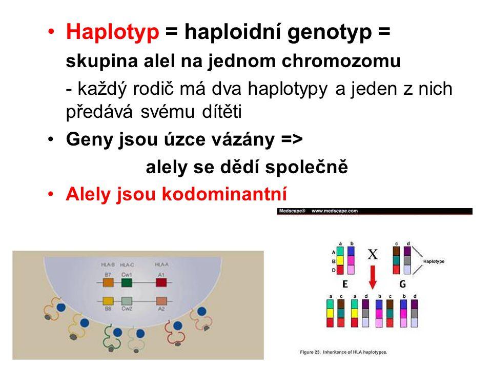 Haplotyp = haploidní genotyp = skupina alel na jednom chromozomu - každý rodič má dva haplotypy a jeden z nich předává svému dítěti Geny jsou úzce váz