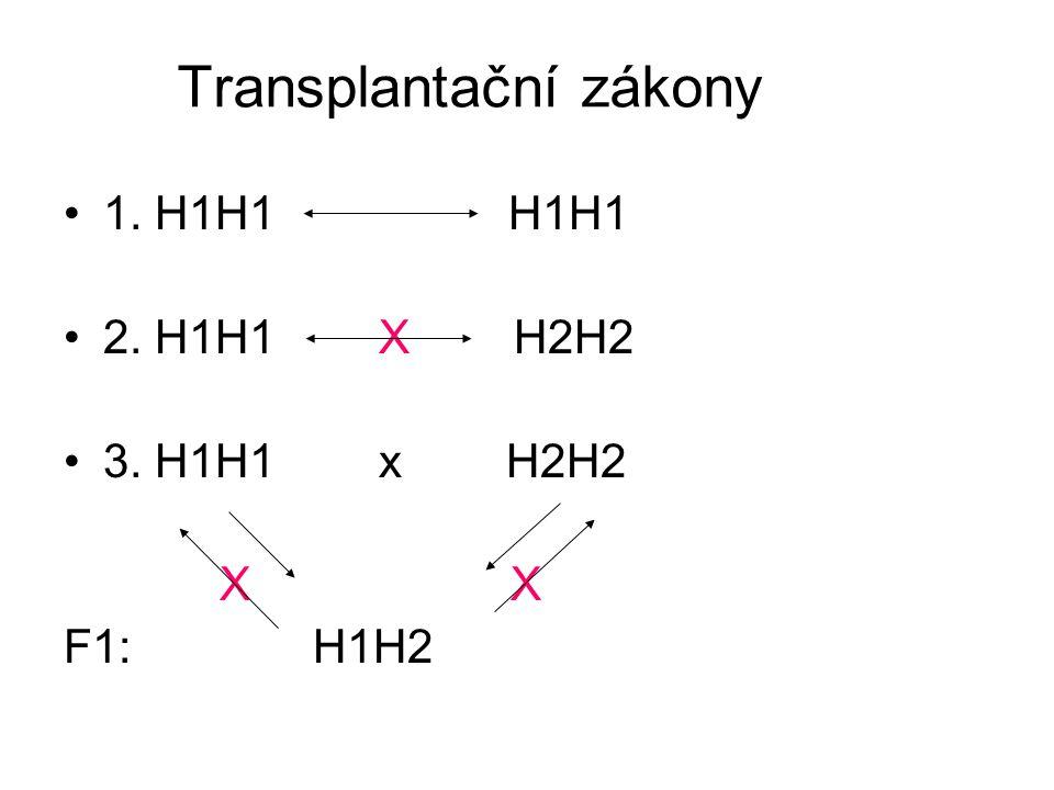 Transplantační zákony 1. H1H1 H1H1 2. H1H1 X H2H2 3. H1H1 x H2H2 X X F1: H1H2