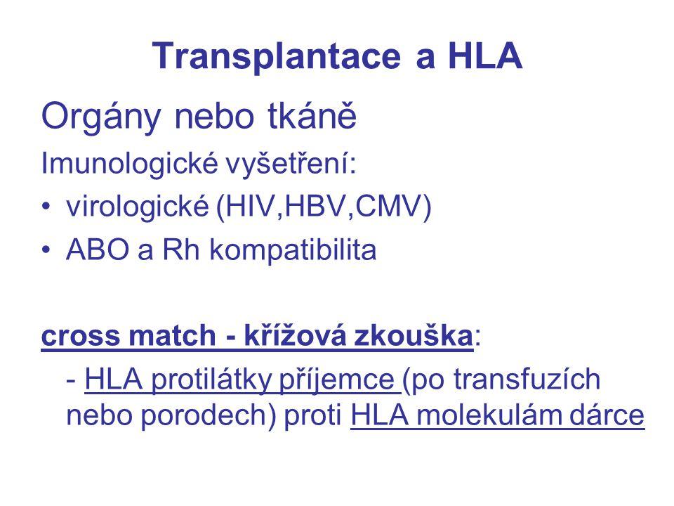 Transplantace a HLA Orgány nebo tkáně Imunologické vyšetření: virologické (HIV,HBV,CMV) ABO a Rh kompatibilita cross match - křížová zkouška: - HLA pr