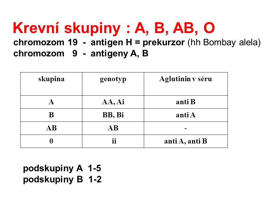 Krevní skupiny : A, B, AB, O chromozom 19 - antigen H = prekurzor (hh Bombay alela) chromozom 9 - antigeny A, B skupinagenotypAglutinin v séru AAA, Ai