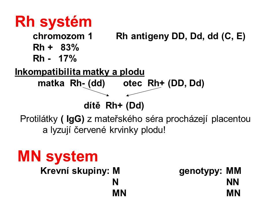 Rh systém chromozom 1 Rh antigeny DD, Dd, dd (C, E) Rh + 83% Rh - 17% Inkompatibilita matky a plodu matka Rh- (dd) otec Rh+ (DD, Dd) dítě Rh+ (Dd) Pro