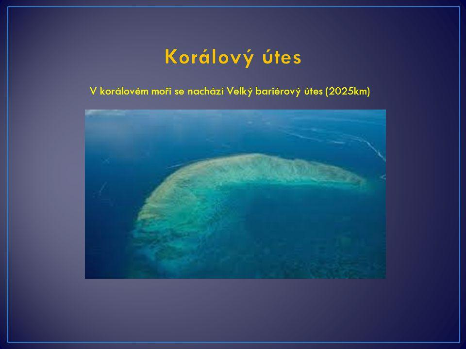 V korálovém moři se nachází Velký bariérový útes (2025km)