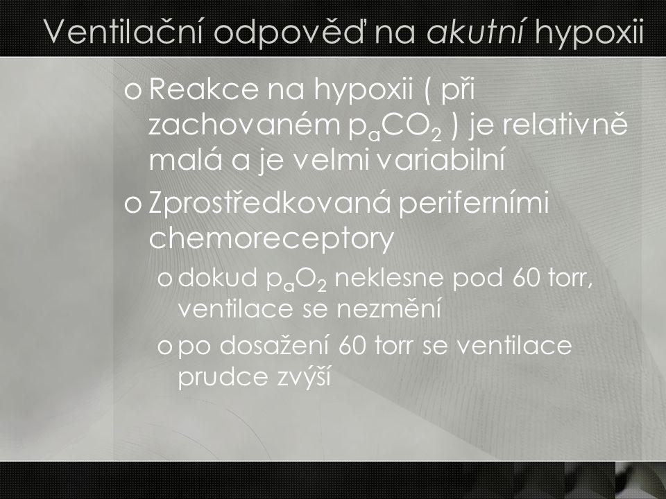 Ventilační odpověď na akutní hypoxii oReakce na hypoxii ( při zachovaném p a CO 2 ) je relativně malá a je velmi variabilní oZprostředkovaná periferní
