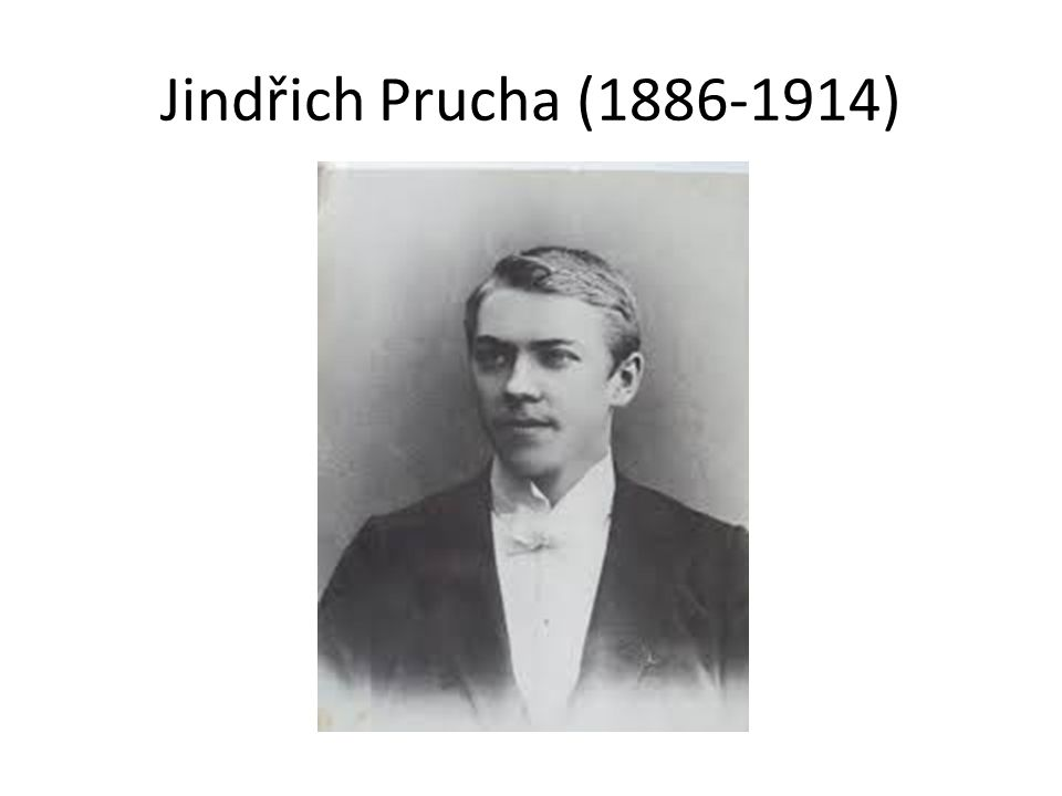Jindřich Prucha: Pohled do kraje, 1909