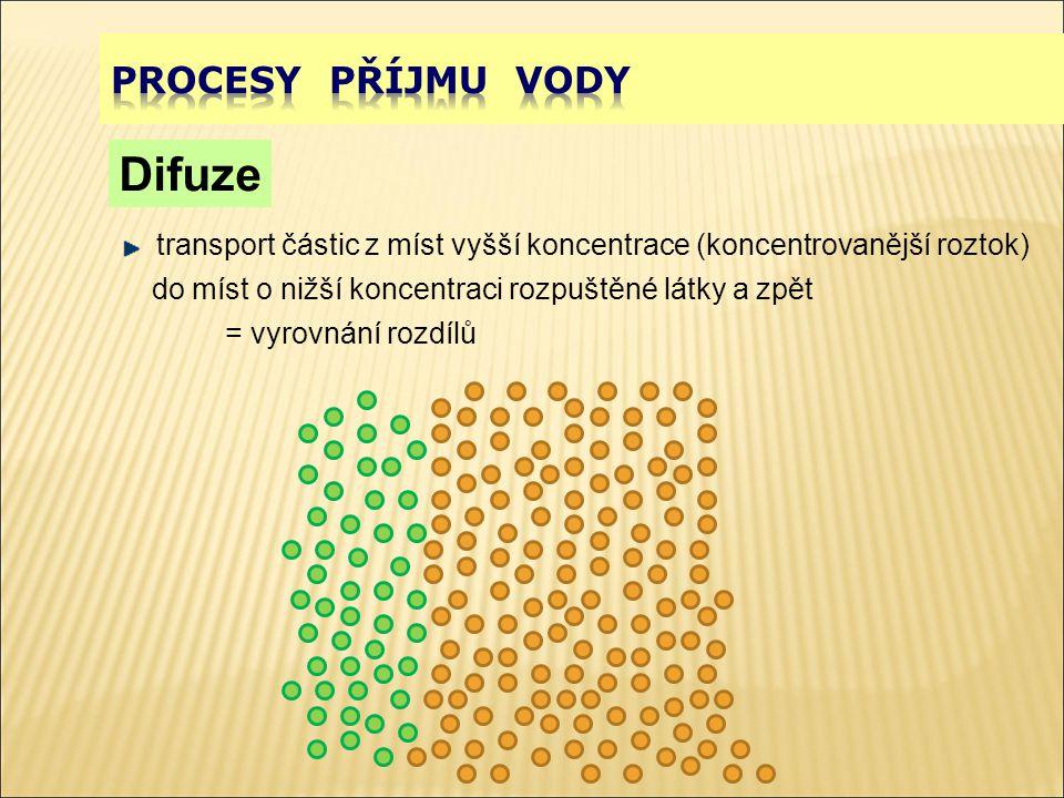 Difuze transport částic z míst vyšší koncentrace (koncentrovanější roztok) do míst o nižší koncentraci rozpuštěné látky a zpět = vyrovnání rozdílů